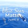 Journée Mondiale de l'Océan: Communiqué de Presse le 8 juin 2020